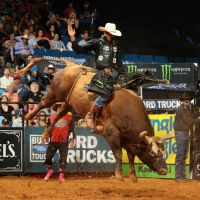 Billet Professional Bull Riders
