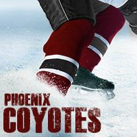 Billet Coyotes de l'Arizona