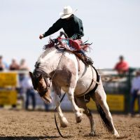 Buy your Rodeo Coupe Canada Desjardins tickets