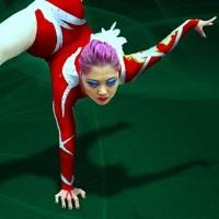 Buy your Cirque du Soleil - Saltimbanco tickets