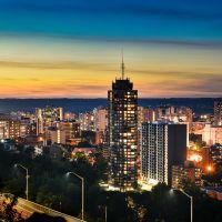 Hamilton concert ticket